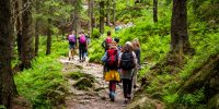 Young hikers in forest heading towards High Tatras peak
